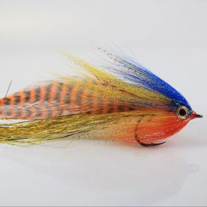 Rob's Reducer – Baby Peacock