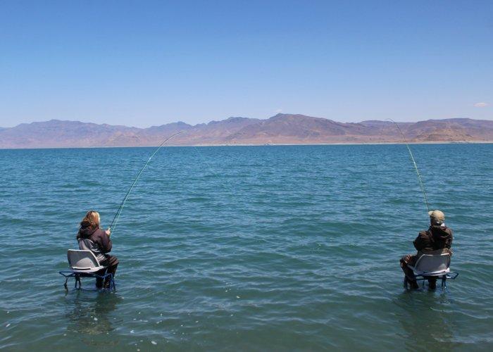 Ladder Fishing Guided Trip Pyramid Lake