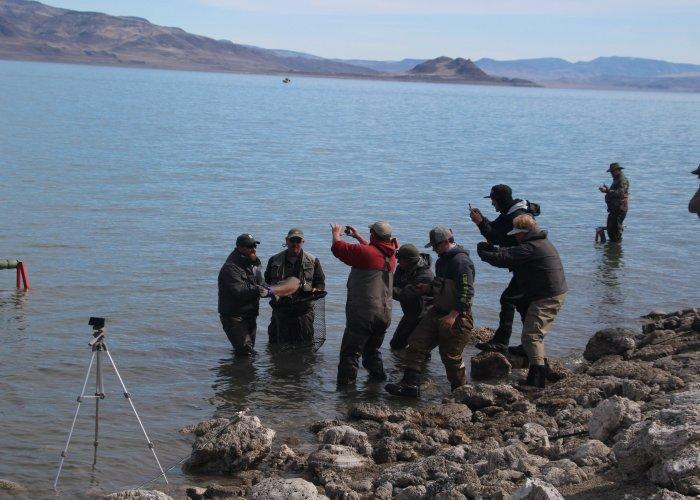 Pyramid Lake Fly FIshing fish of a lifetime